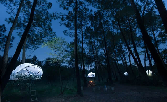 dormir dans une bulle dans les arbres insolite en bretagne. Black Bedroom Furniture Sets. Home Design Ideas