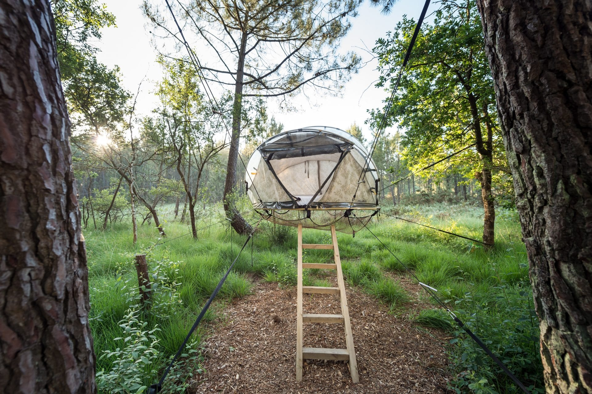 dormir dans une bulle dans les arbres insolite en bretagne. Black Bedroom Furniture Sets. Home Design Ideas