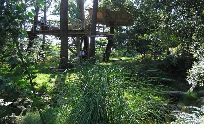 Nichée dans son petit bois la cabane dans les arbres, hébergement insolite de Dihan en Morbihan