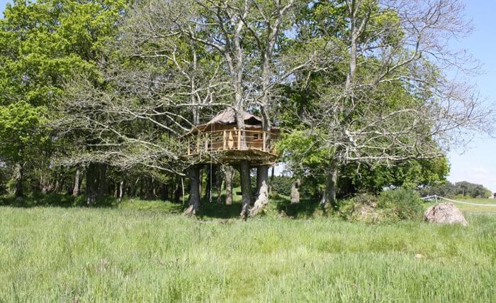 cabane dans les arbres folenn bretagne maison dans les. Black Bedroom Furniture Sets. Home Design Ideas