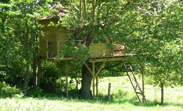 Maison perchée dans les arbres Bretagne