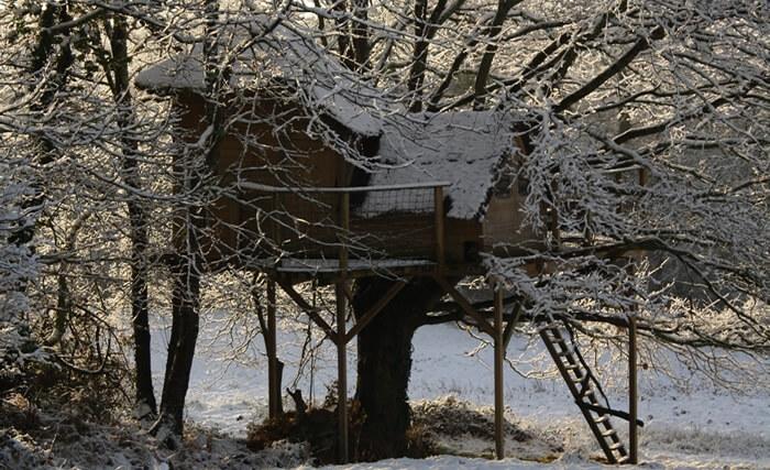 Nuit insolite dans les arbres Bretagne