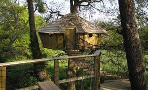 Cabane dans les arbres avec un pont