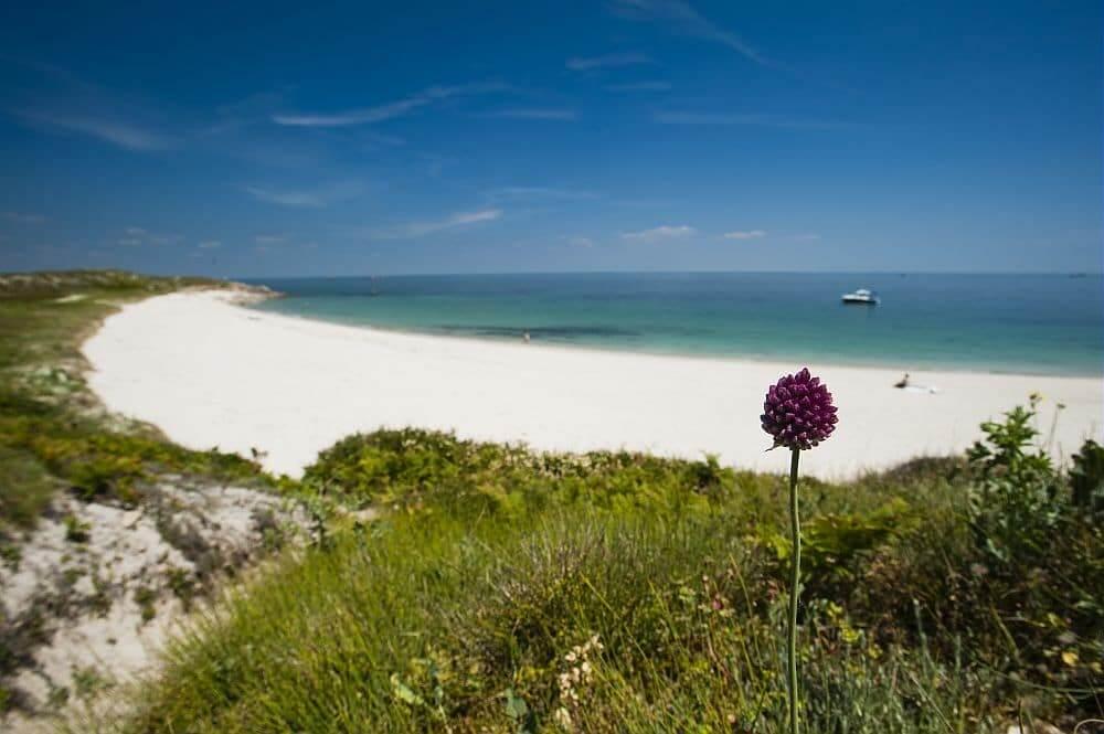 L'île d'houat, un perle à découvrir comme ses voisines, hoedic et belle ile