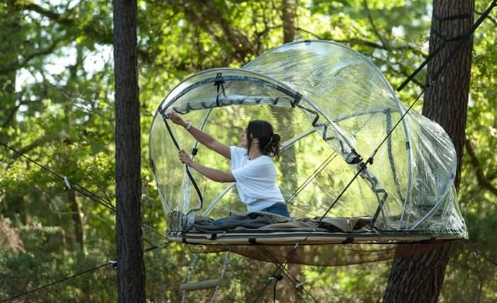Transparent bubble tents among the treetops
