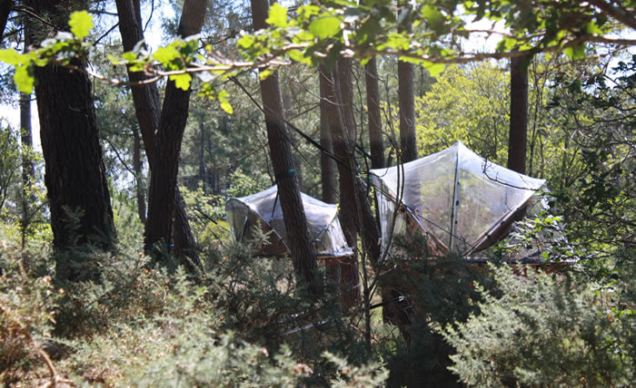 Tente Dans Les Arbres : dormir dans une bulle dans les arbres en bretagne nuit dans une bulle ~ Nature-et-papiers.com Idées de Décoration