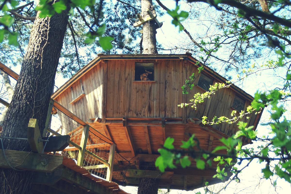 Cabane dans les arbres en amoureux dans le Morbihan