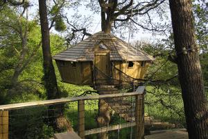 Cabane perchée dans les arbres pradan