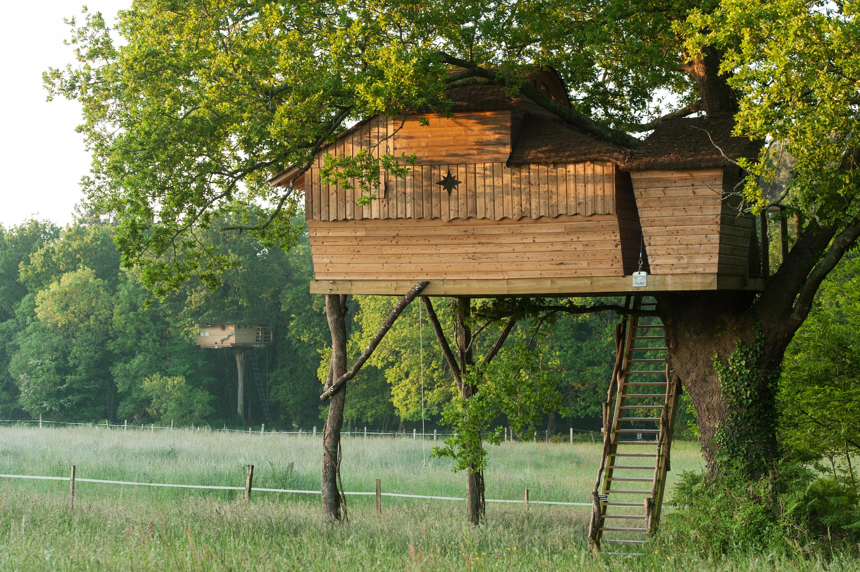 cabane dans les arbres famille - Dihan evasion