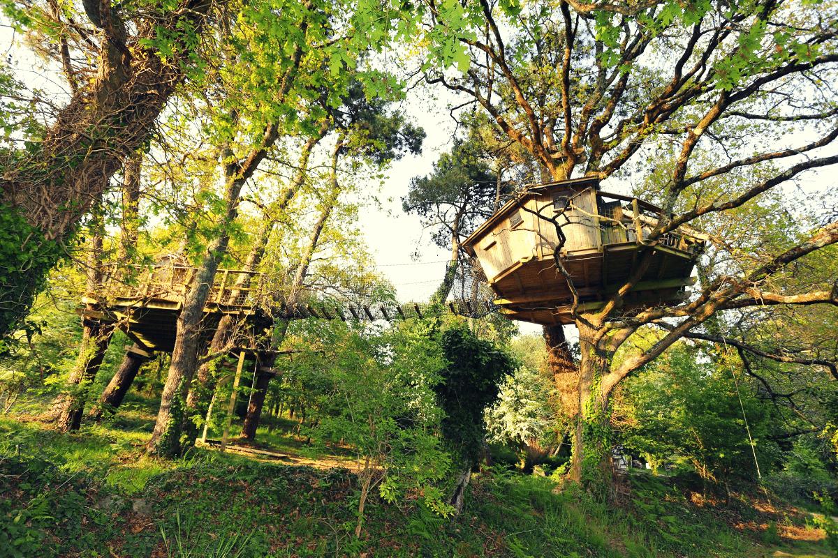 Dormir perché dans les arbres pradan