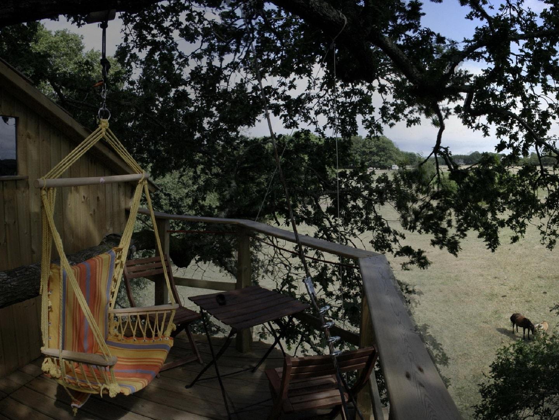 Dormir dans les arbres Nijal