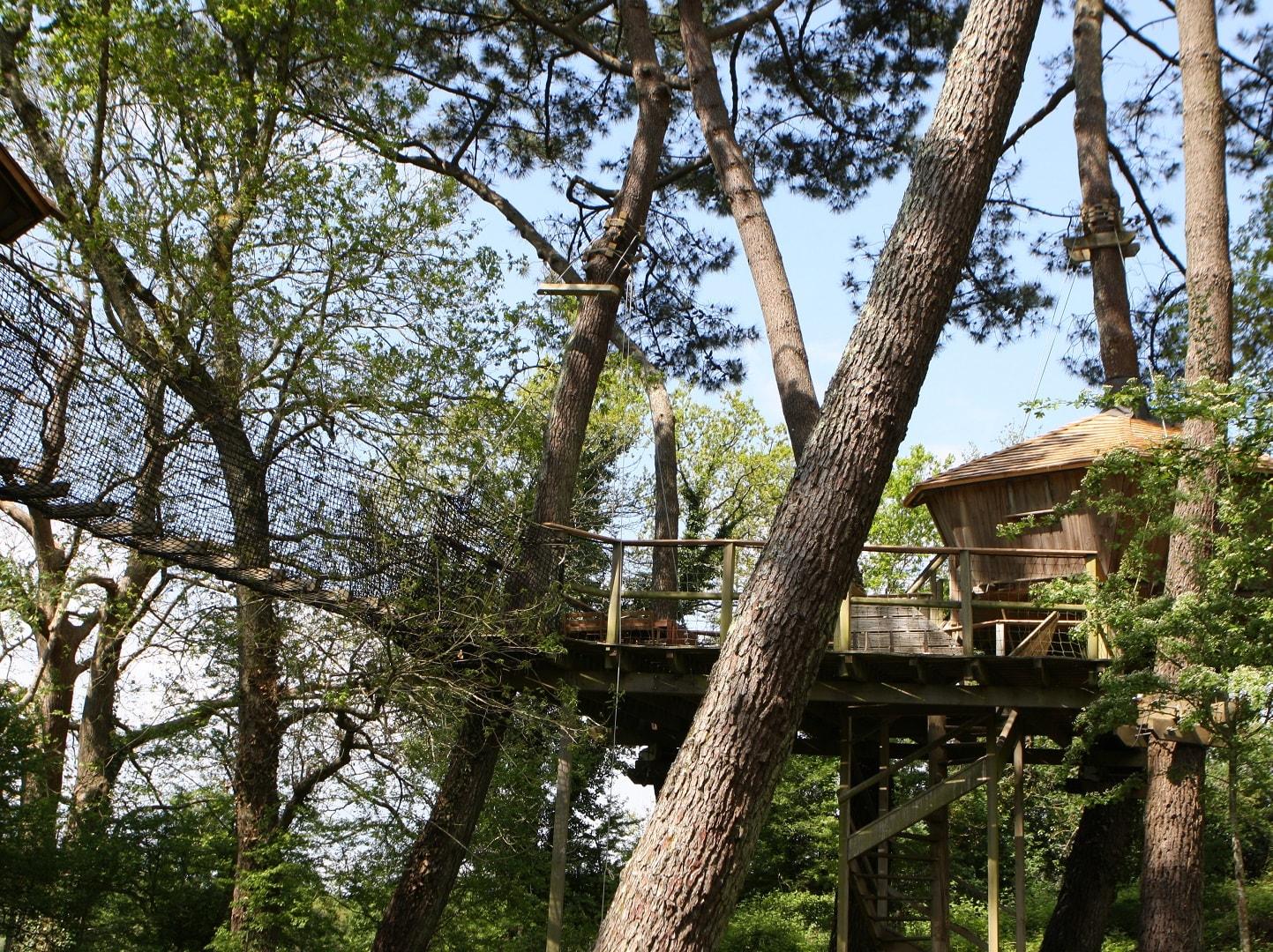 Cabane dans les arbres familiale Baman