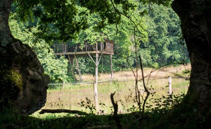 Hotel dans les arbres Bretagne