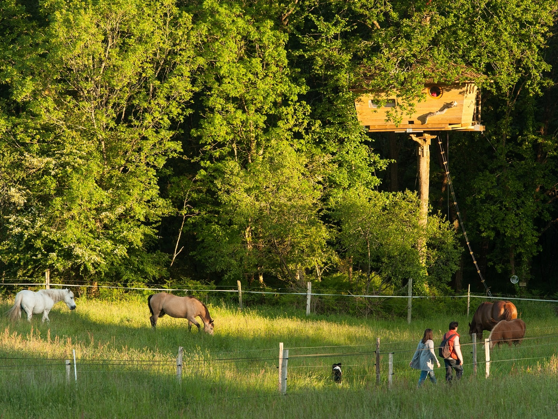 Cabane perchée dans les arbres Neh Er Lenn