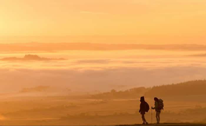Des découvertes côté nature en Bretagne sud.