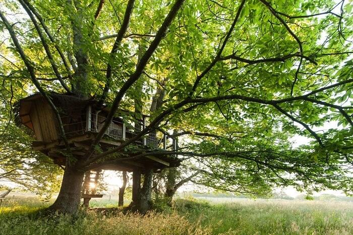 France, Morbihan (56), Ploemel, domaine de Dihan et ses hŽbergements touristique, cabane dans les arbres (property release ok) // France, Morbihan, Ploemel, tourist accomodation of Dihan, treehouse (property release ok)