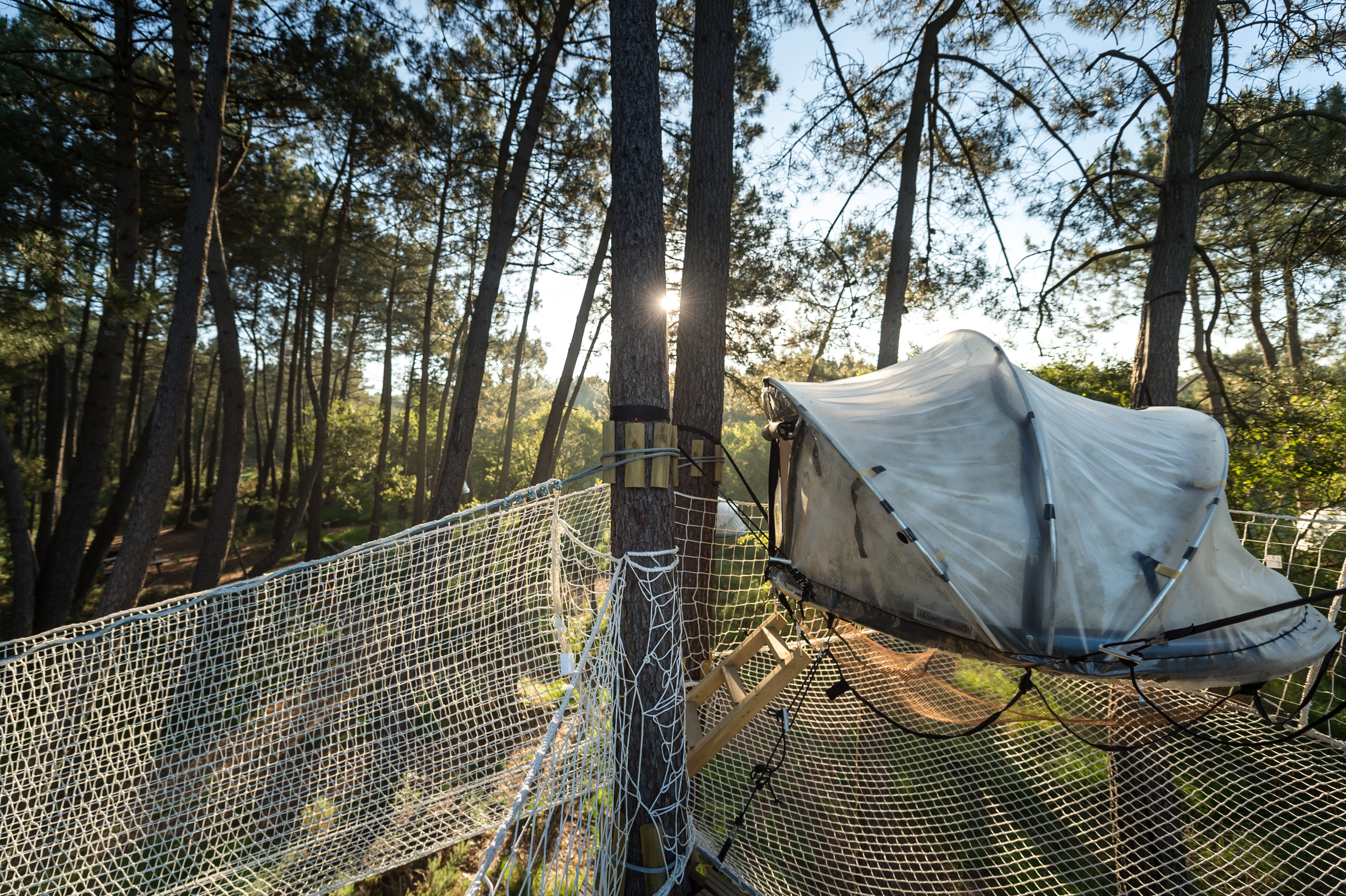 dormir dans les arbres en bretagne