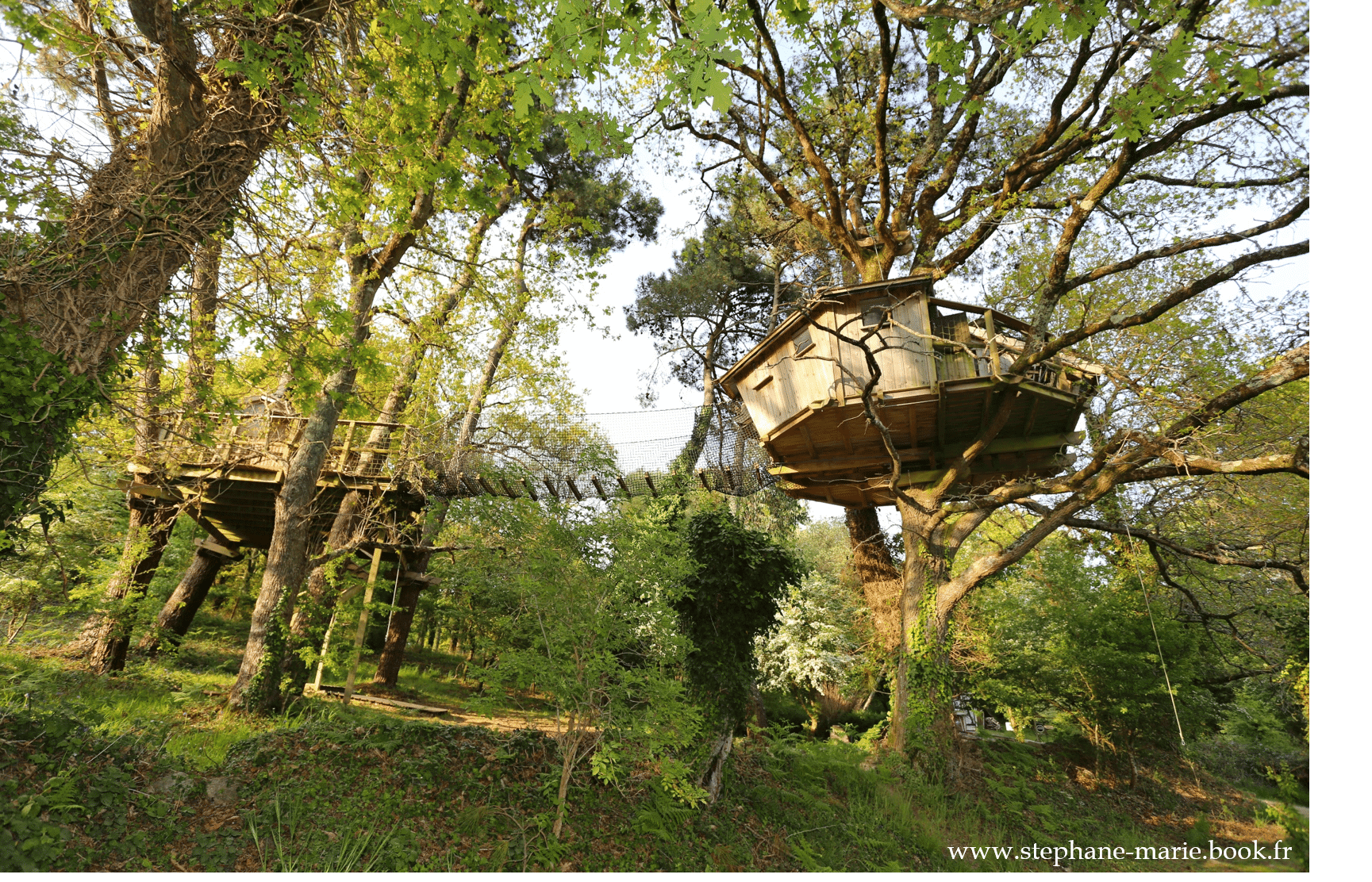 cabane dans les arbres Bretagne pradan