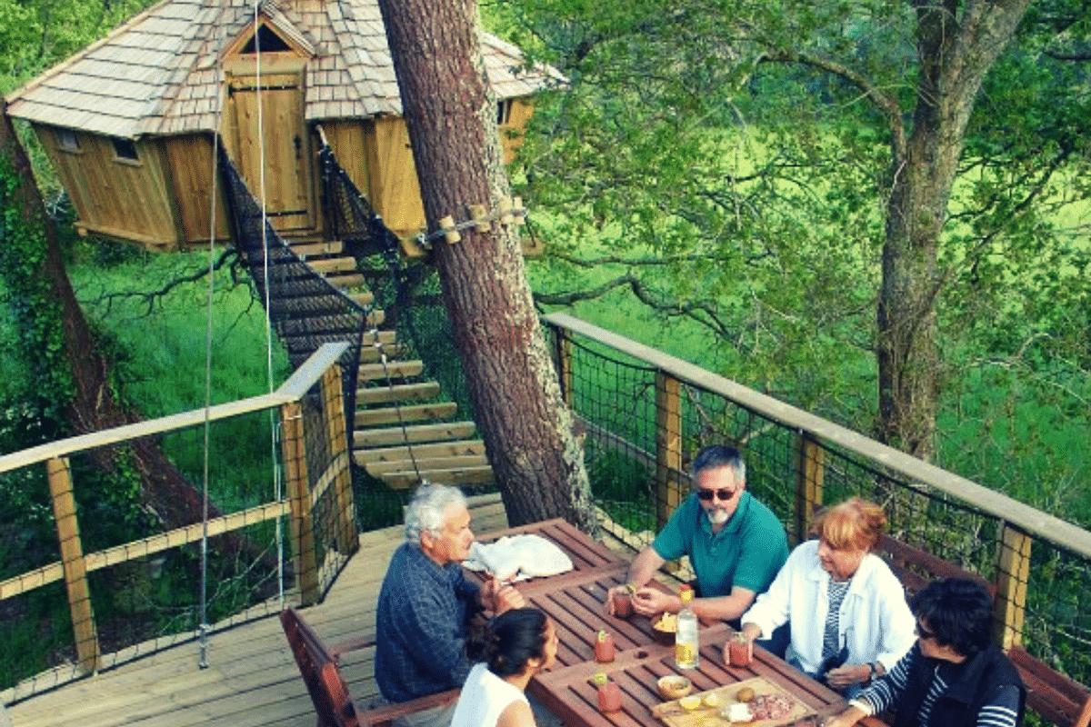 Café d'accueil perché dans les arbres